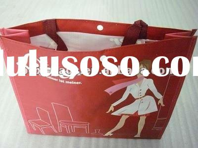 2012 Best selling PP Woven bag for young girls