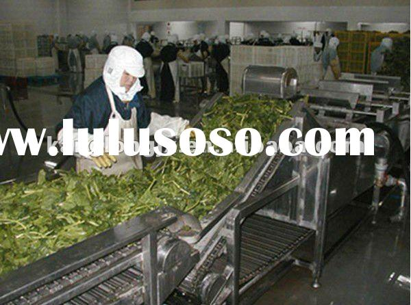 vegetables and fruit frozen processing line