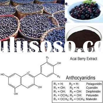 Acai Berry Extract for Healthcare Products