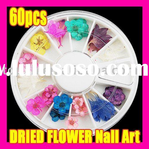 038 Fast Shipping Wholesales Price 60pcs Wonderful Design Dried Flower Make up Nail Art