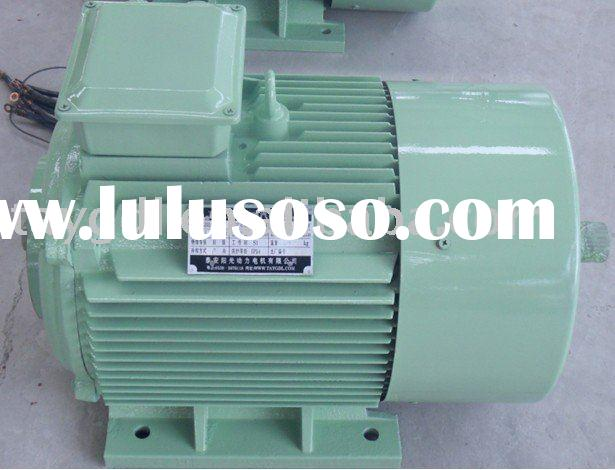 Electric Vehicle Motor