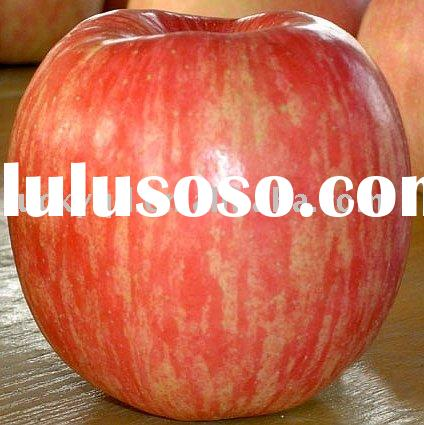 red delicious apple fruit
