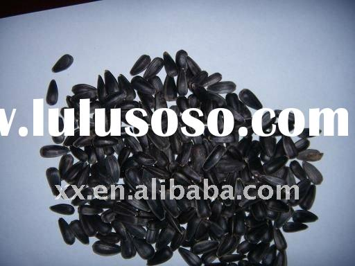 sunflower seed in shell for oil
