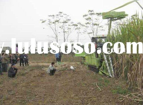 whole stalk sugarcane harvester