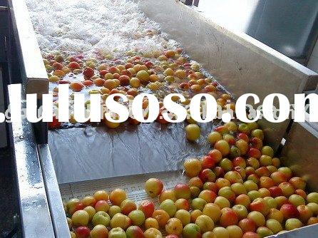 Fruit Processing Line(Fruit and Vegetable Processing Complete Set,Fruit Juice Processing Line)