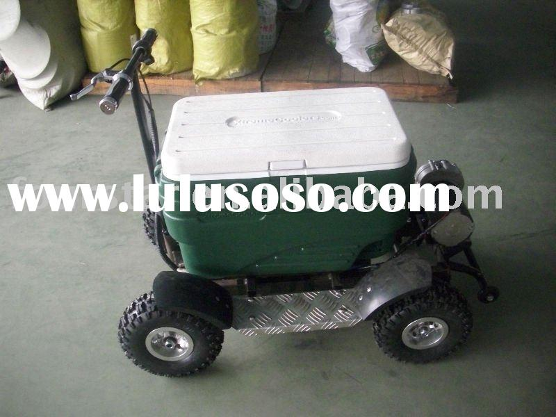 mini car cooler 2010 new (SX-G110-E)