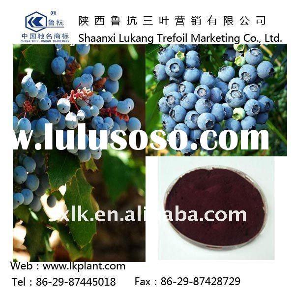 natural pure blueberry juice --China factory (GMP.HACCP)