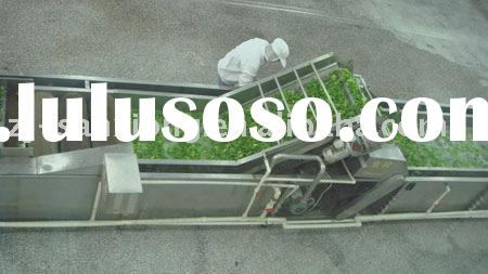 vegetable&fruit drying production plant
