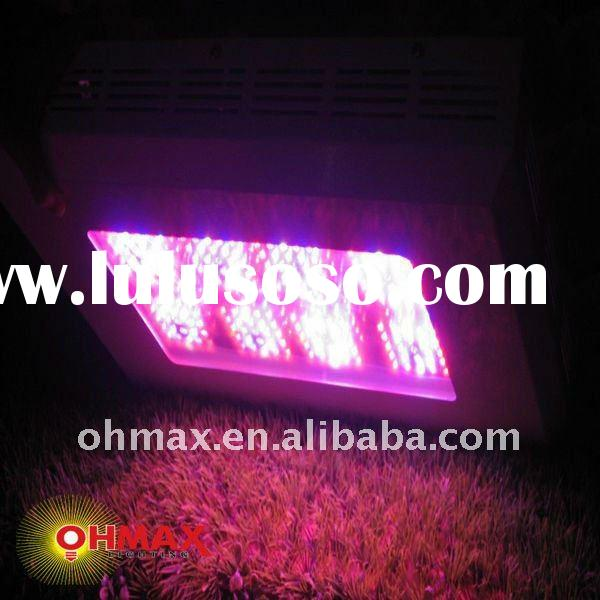 Agriculture/ Horticulture 200*3w LED Plant Grow Light