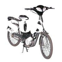 Two Stroke Gas Engine Bike with Feet Paddle WZGB3501
