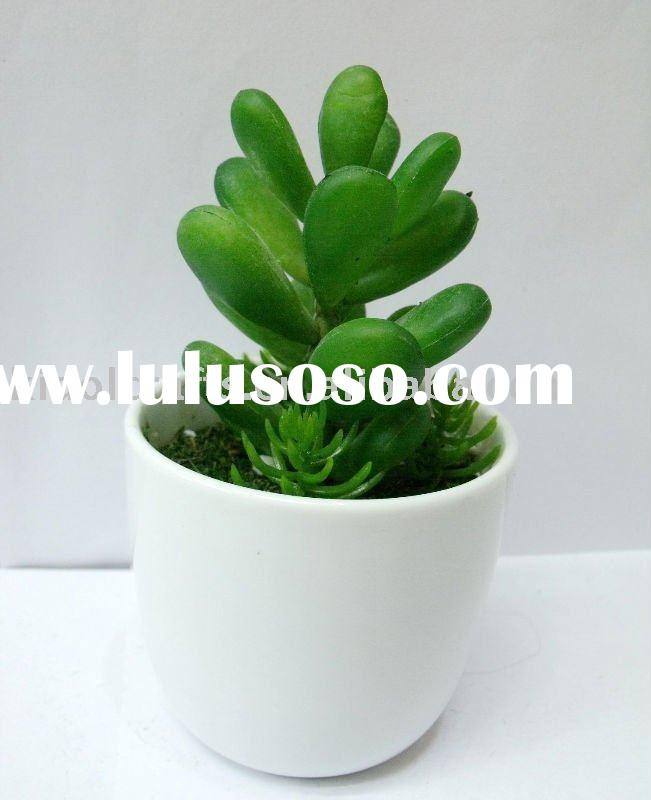 mini potted plant,artificial desert plant with pot,artificial agave
