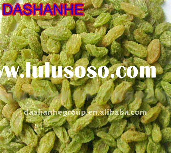 Dried Green Raisin with large quantity and best price