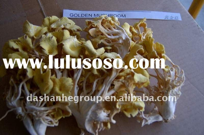 Dried needle mushroom,best discount, snack food