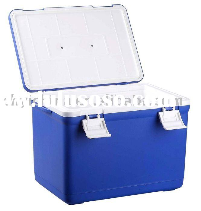 Mini fridge cooler box