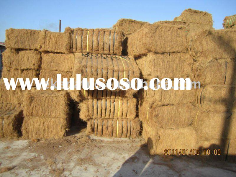 supply high-quality golden yellow coconut fiber all the year round