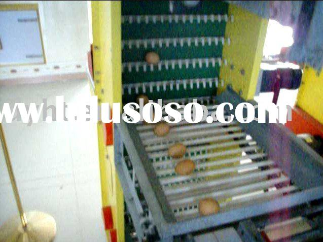 Egg Collecting System