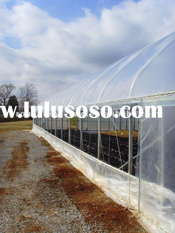 single span film plastic agricultural tunnel greenhouse
