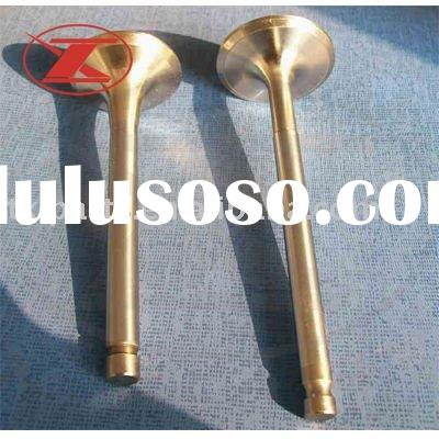 Engine Valve for Auto and Motorcycle