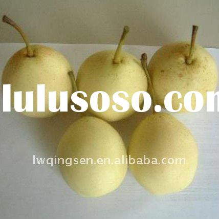china cheap fresh ya pear