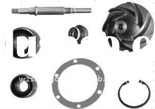 Truck Water Pump Repair Kit 5010323187