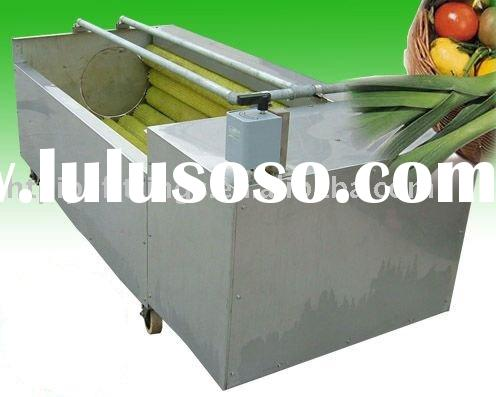 Vegetable/fruit brush washing and peeling machine