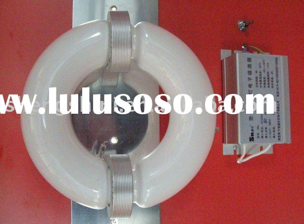 80/100/120/150/180/200/250W Ring type LVD electrodeless fluorescent induction lamps with E-ballast