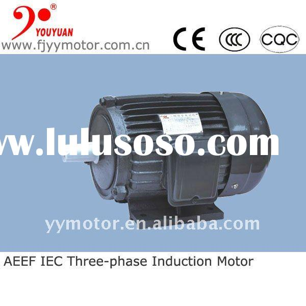 high torque small electric motors