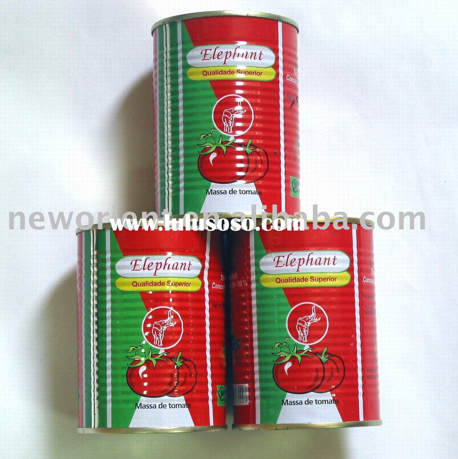 Canned food tomato paste/sauce