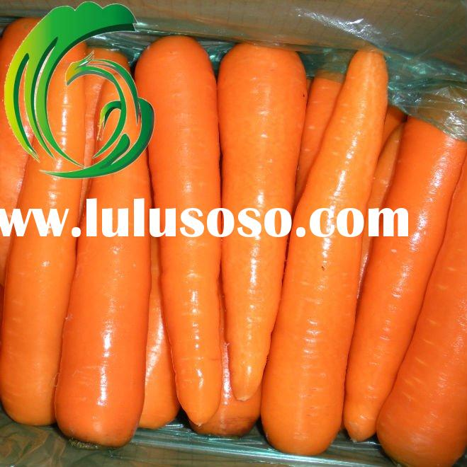 Fresh washed carrot of 100-150g 150-200g