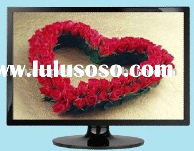 18.5 inch full color LED monitor