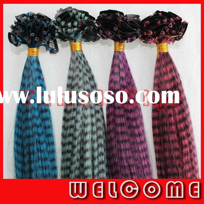 2011 New Fashion High quality 100% Indian human clip in Feather Hair Extension