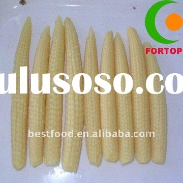 Healthy Food Canned Baby Corn Whole in Brine