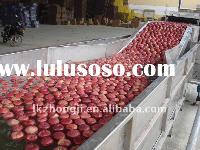 fruit dry cleaning machine