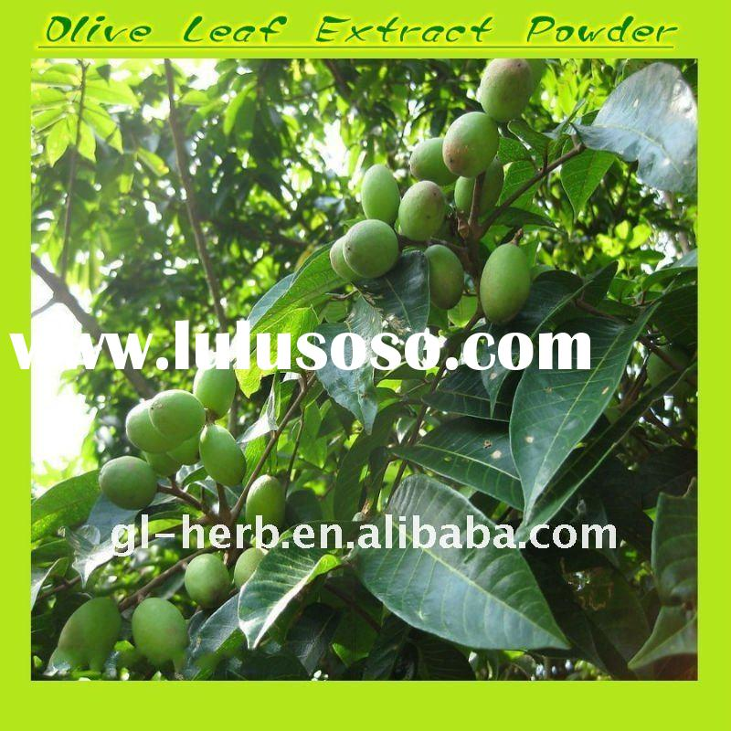 18-20% olive leaf extract