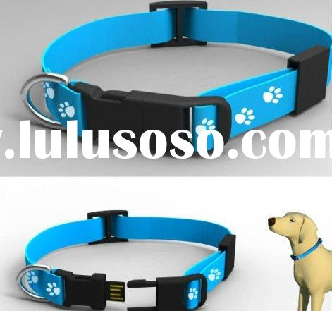 Dog collar usb flash drive !