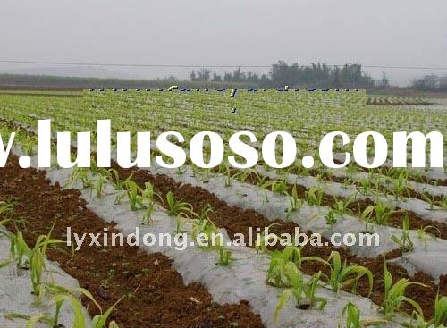 plastic mulch film of agricultural