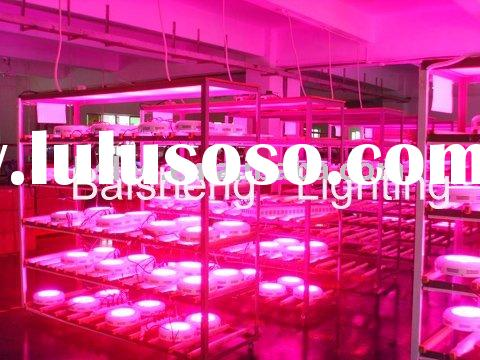 high efficiency hydroponics system led grow light For greenhouse/garden