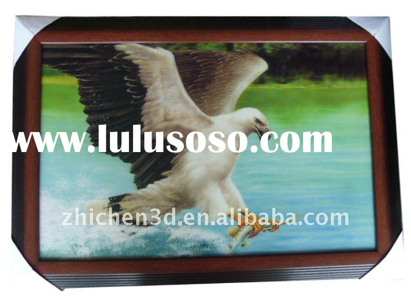 3d eagles pictures with frame