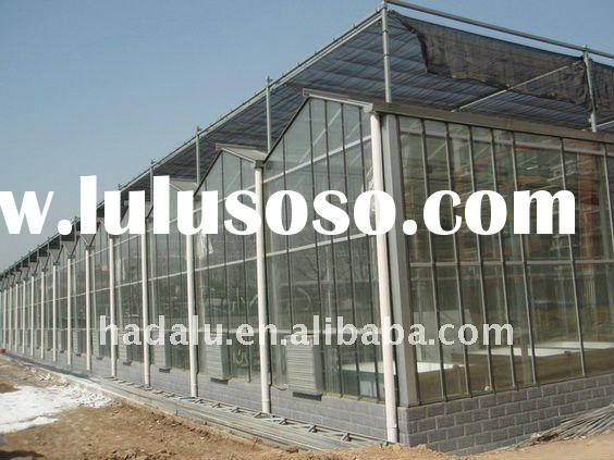 Glass Multi-span Venlo-type Greenhouse