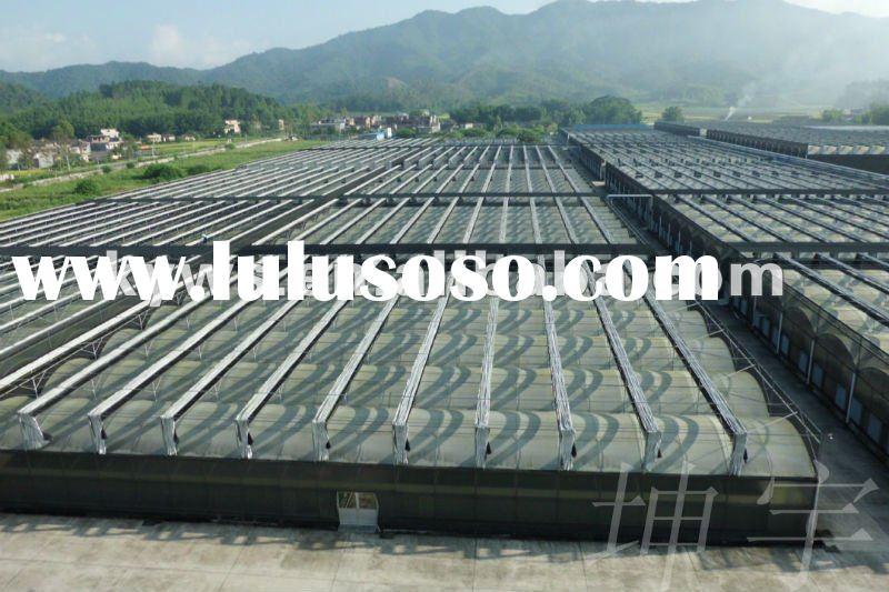 multi-span hydroponic agricultural film greenhouse