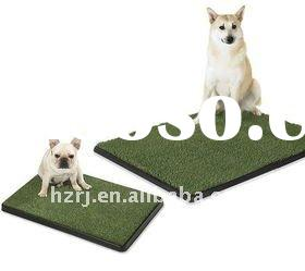 Potty pad/patch hot