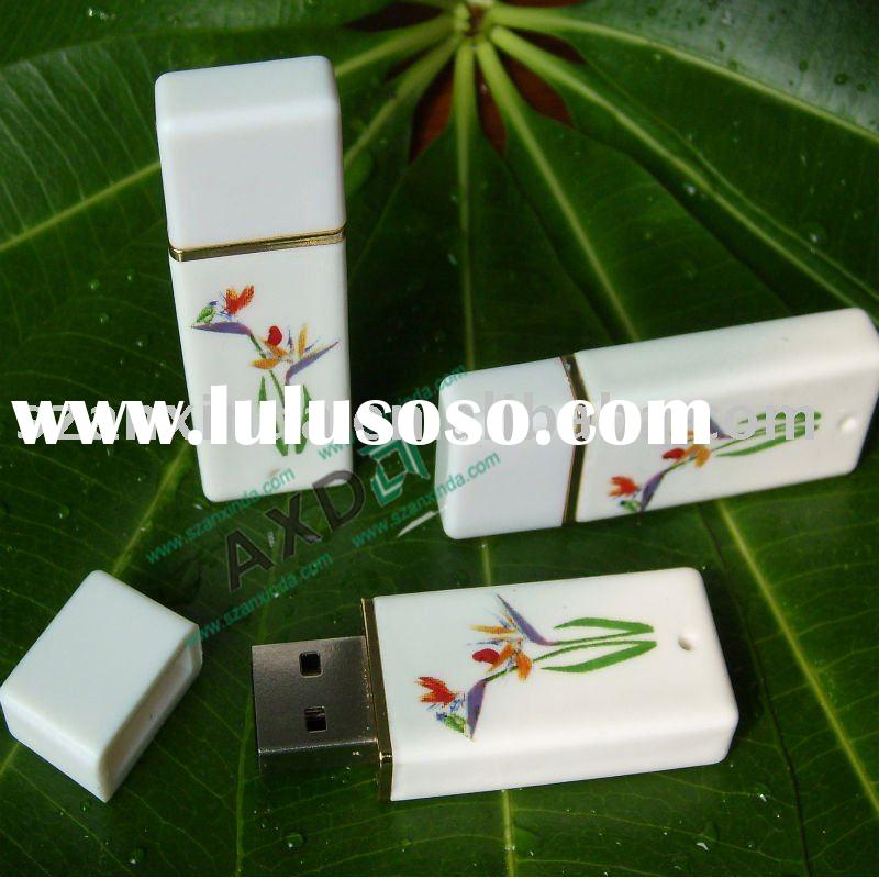 2010 new china material USB Flash Drive