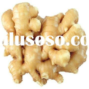 Dried ginger price in 10kg carton package.2010 crop . MOQ:1X40FCL.