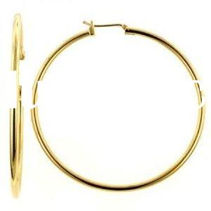 Jewelry Designer Inspired Gold Filled Hoop Earrings