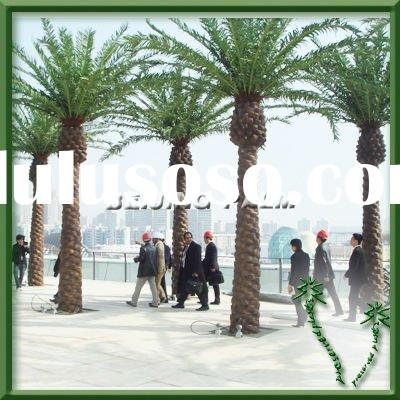 Outdoor Artificial Middle East Canary Palm tree