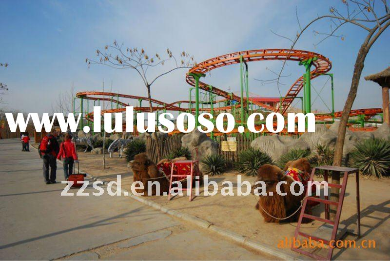 Roller Coaster!!!2011 Hot Sale Exciting Outdoor Amusement Park Rides For Young People/Kids