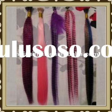 2012 Hot Sale Synthetic Clips in Feather Hair Extensions