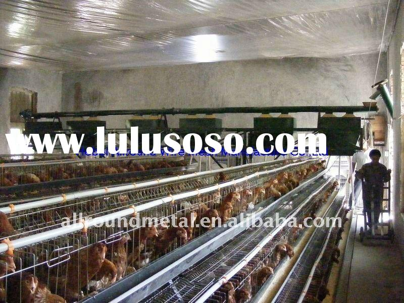 chicken egg layer cage, poultry shed