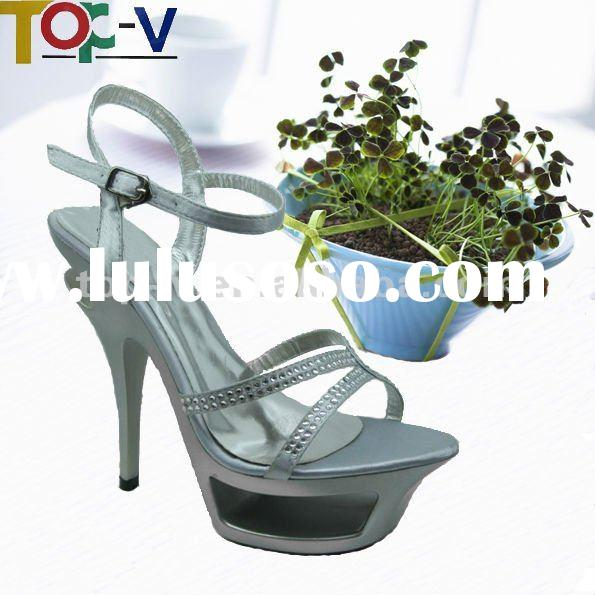 2012 Latest Fashion High Heeled Ladies Shoes