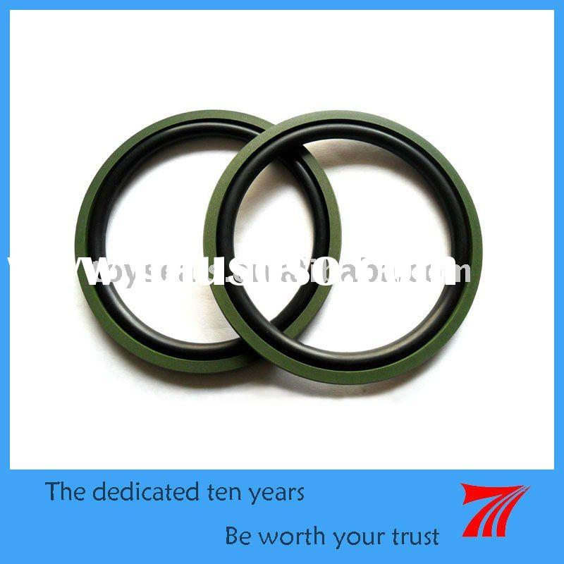 PTFE & Rubber Seal